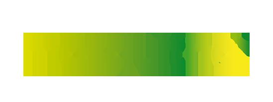 MSQ-Logo