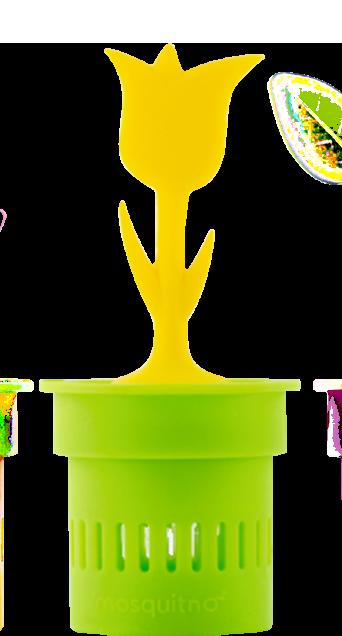 pot-R-cup-r-2